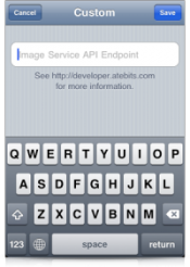 Custom API URL - Twitter IPhone App